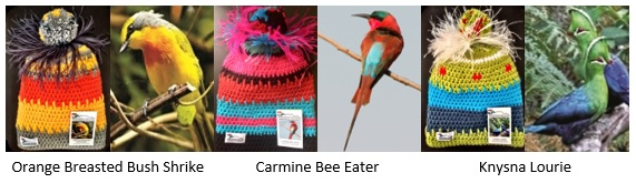 birds beanies newsletter2
